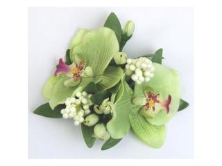 "Coronita ""Orchid"" D12cm Green, 1 buc"