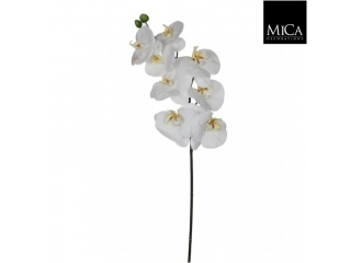"Floare artificiala ""Phalaenopsis"" White, L71,1 buc"