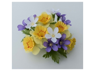 "Coronita ""Narcissus Blossom"" Yellow/lilac, 1 buc"