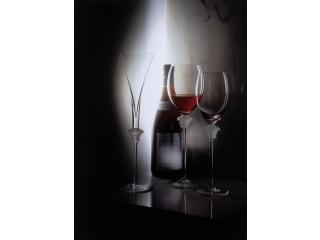 """Set """"VersaceMedusaLumiere"""" pahare  p-u brandy, 6 pcs"""