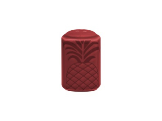 """Aztek RED"" Vas pentru sare, 10 cm, 1 buc"