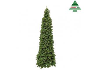 """""""Picea"""", Brad, h230cm, d89 cm, 1buc"""