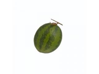 """Fruct artificial """"Pepene"""", H17 cm, D15 cm, 1 buc"""