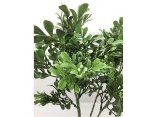 """Floare artificiala """"Bosso foglie mazzo""""  h33 cm,green, 1 buc."""